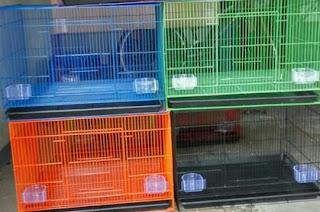 Kisaran Harga Terbaru Kandang Besi Ternak Lovebird Saat Ini Dan Terlengkap