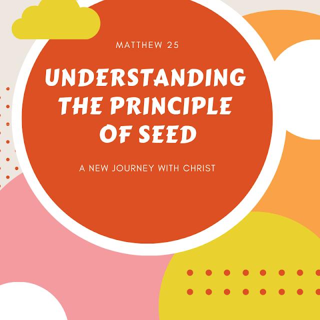 Understanding the principle of seed