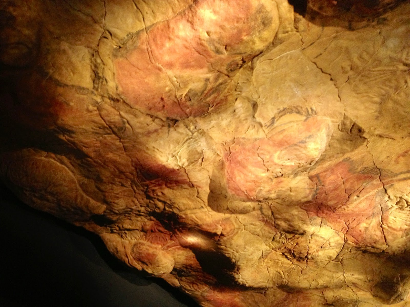 Reproducción de la Cueva de Altamira - Altamira - Capilla Sixtina Paleolítico - Museo Arqueológico Nacional - MAN - Madrid el troblogdita