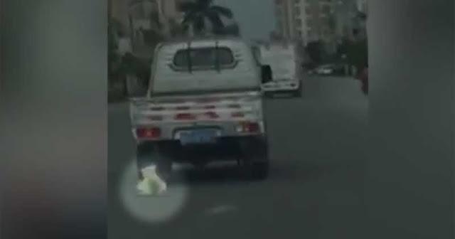 Graban a un hombre arrastrando a su perro desde una camioneta