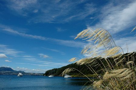 Taupo, Selandia Baru
