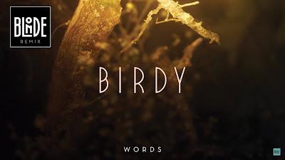 Birdy - Words ( Blonde Remix )