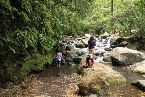 air terjun tiu kelep senaru lombok utara