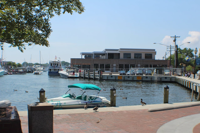 4 Things to Do on the 4th of July in Annapolis, MD
