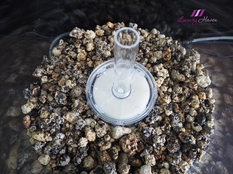 adding biorb ceramic substrate