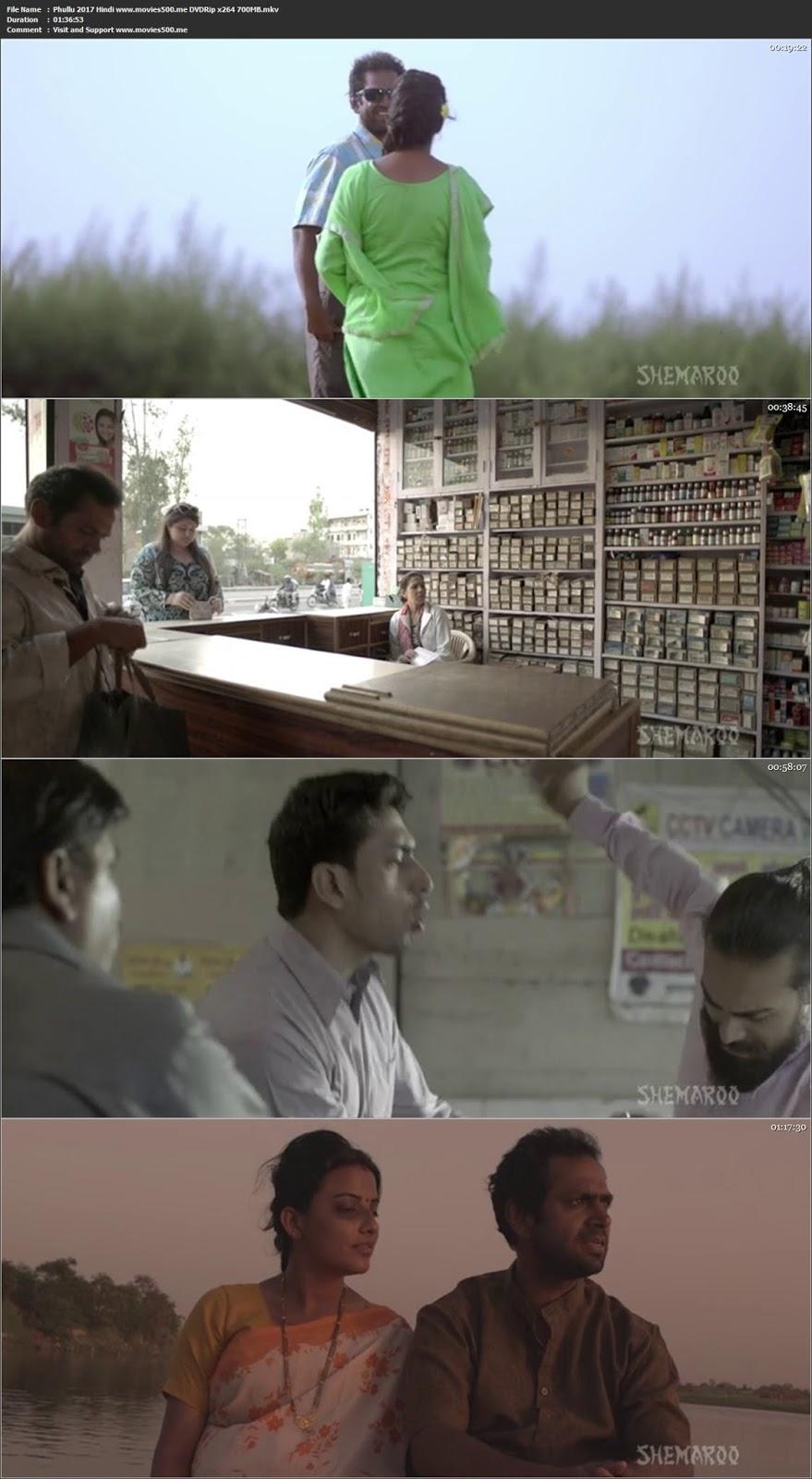 Phullu 2017 Hindi Full Movie DVDRip 720p ESubs at movies500.xyz