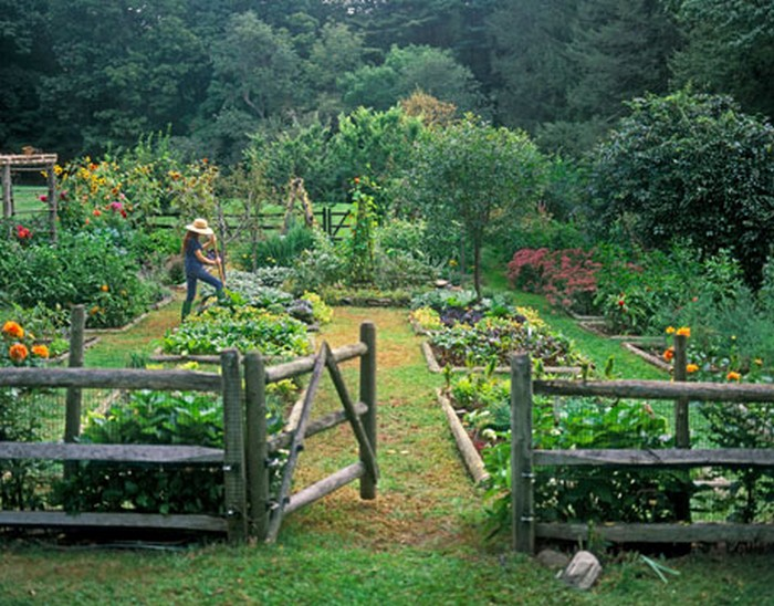Casual Casa: Stunning garden designs & permaculture on Backyard Permaculture Design id=51244