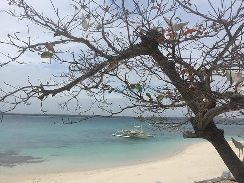 Island-hopping in Bantayan Island