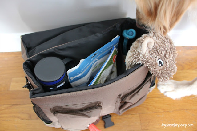 pet friendly travel tips, Solvit HomeAway Travel Organizer Kit Review Giveaway