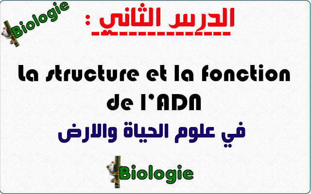 الدرس الثاني: La structure et la fonction de l'ADN في علوم الحياة والارض