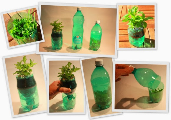 palastic bottle decor