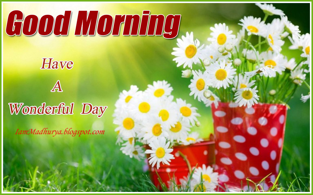 Good morning wonderful morning images wishes quotes madhuryas here is a good morning wishes good morning hd wallpapers good morning message good morning greetings good morning hd pictures good morning inspiring wishes m4hsunfo Gallery
