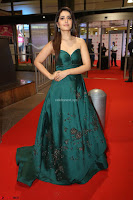 Raashi Khanna in Dark Green Sleeveless Strapless Deep neck Gown at 64th Jio Filmfare Awards South ~  Exclusive 148.JPG