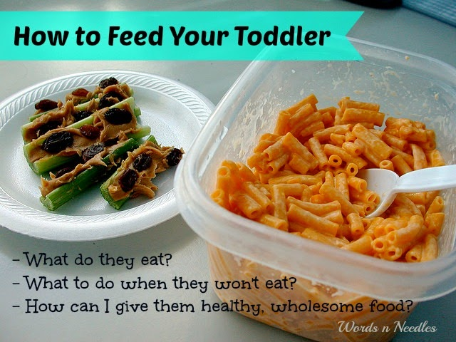 How to prevent picky eating in toddlers