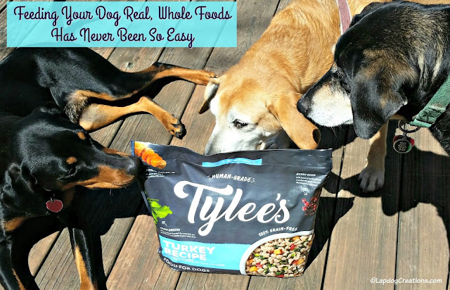 3 resuce dogs with tylees frozen dog food chewy