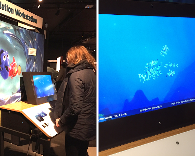 Hands-on experiments with animation at the Science Behind Pixar Exhibit.