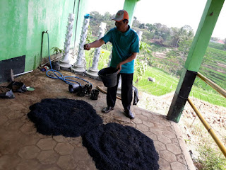 cara membuat arang sekam dari sabut kelapa