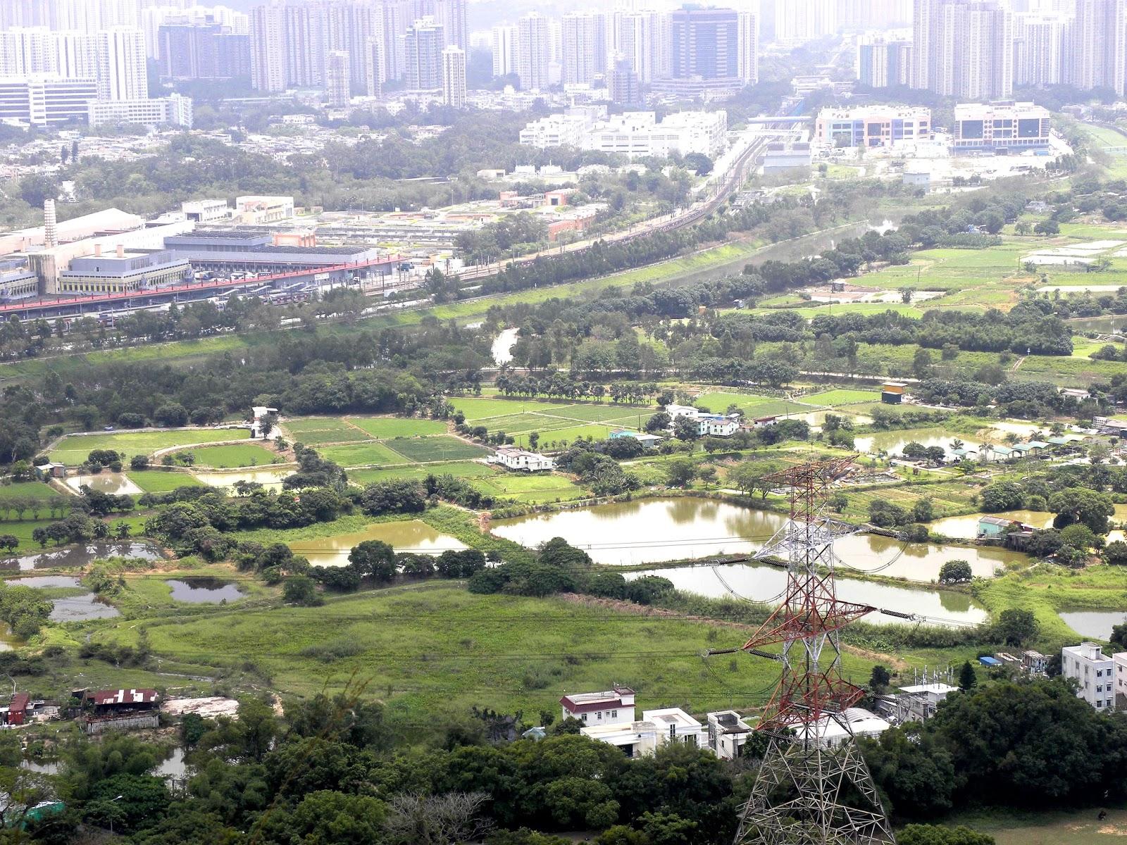 懷舊香港: 遊北區華山