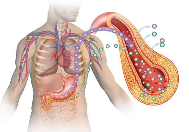 Ciri Ciri,Gejala,Penyebab Penyakit Gula & Obat Herbalnya