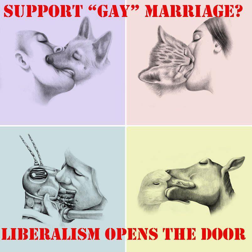 Gay Marriage Propaganda 67