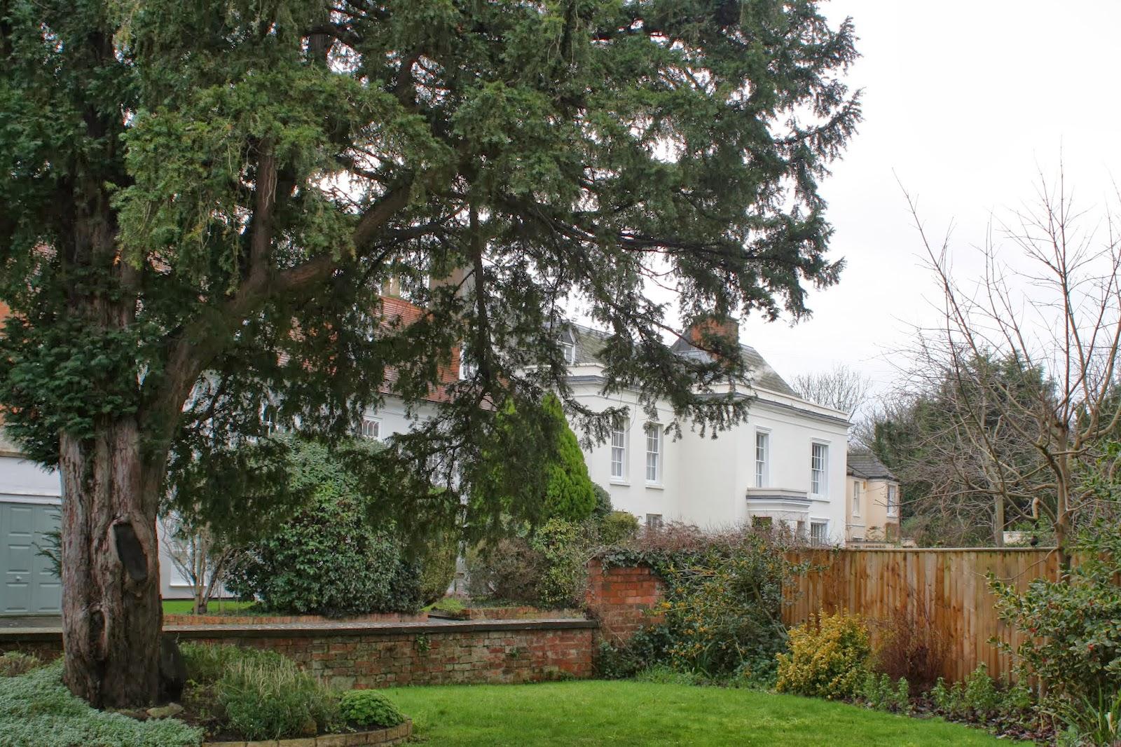Silent-Sunday-new-house-view-garden