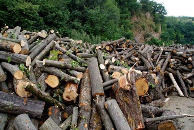 AMD49 millones en daños ambientales en Armenia