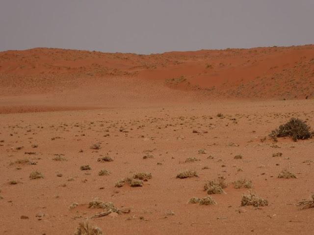 le dune rosse del Namib-Naukaluft National Park