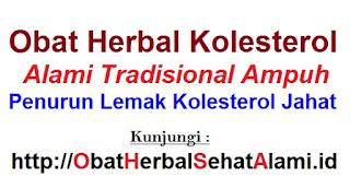 Jual OBAT HERBAL ALAMI AMPUH PENURUN KOLESTEROL TINGGI tradisional