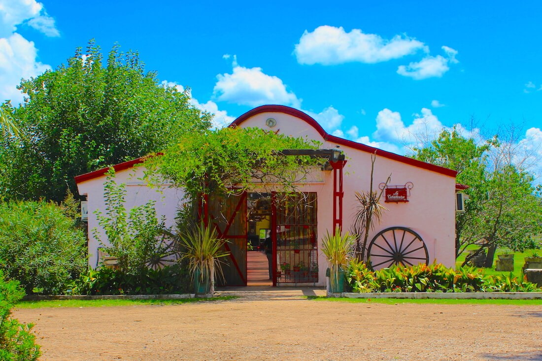 pink building in the ranch