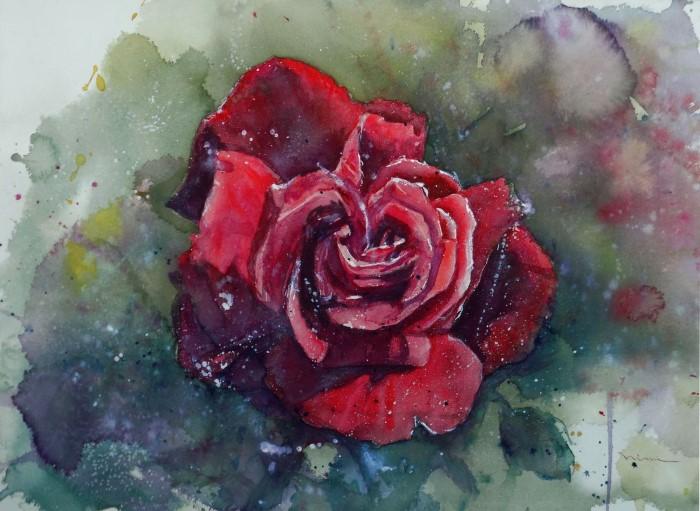 Ninni Watercolors