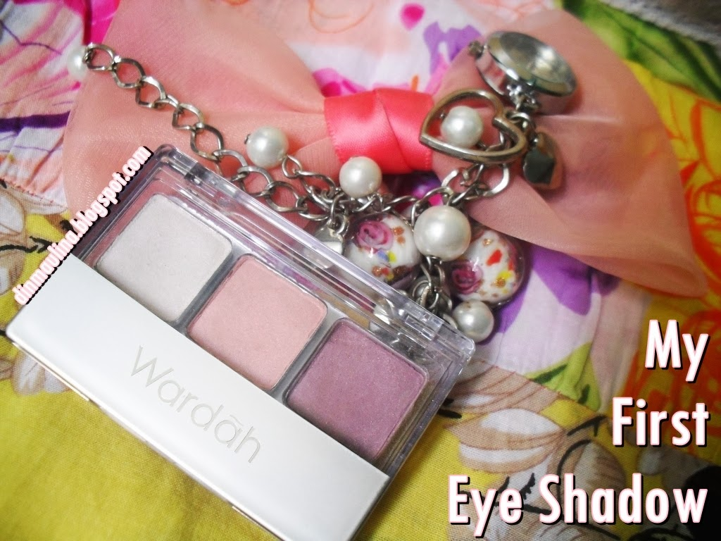 The Journey of Pinkcess: My First Eye Shadow [Review