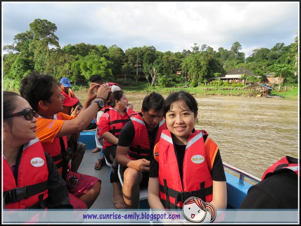 Kinabatangan river cruising
