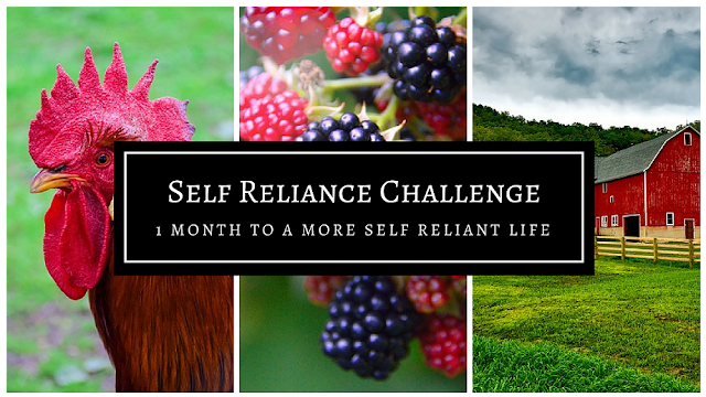 Self Reliance Challenge Wrap Up