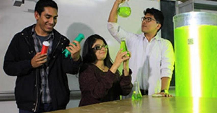 UNALM: Estudiantes de Universidad Agraria crean lámpara «viva» que purifica el aire - www.lamolina.edu.pe