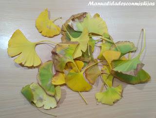 hojas-de-otono-para-manualidades