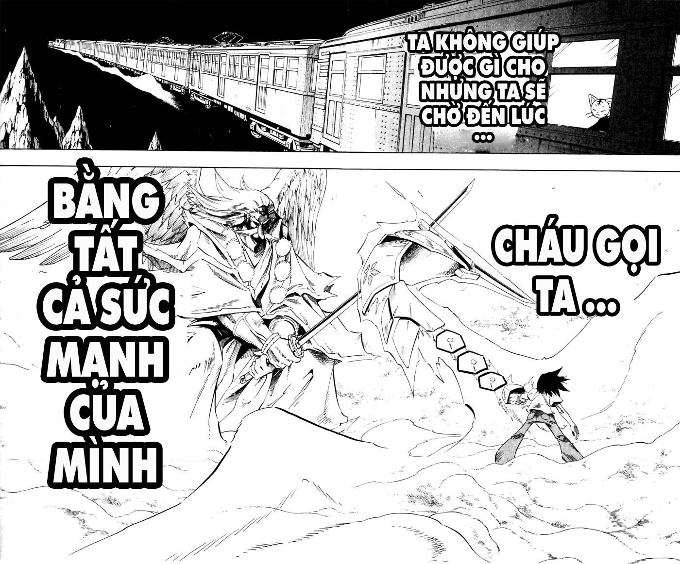 Shaman King [Vua pháp thuật] chap 236 trang 14