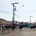 """Alguns cuidados para evitar acidentes com animais que """"passeiam"""" pelas ruas"""