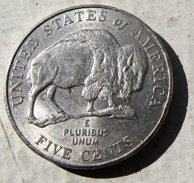 How much is a 2005 buffalo nickel worth