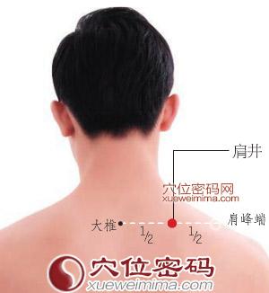 肩井穴位 | 肩井穴痛位置 - 穴道按摩經絡圖解 | Source:xueweitu.iiyun.com