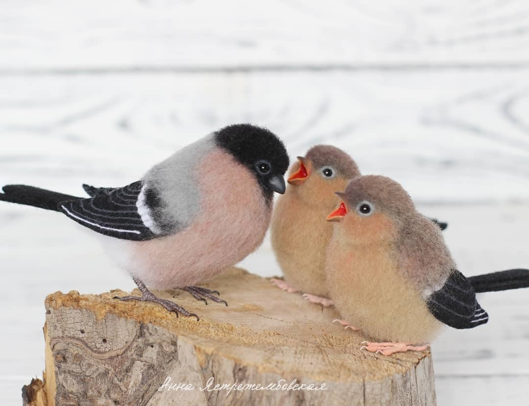 10-Bird-Choir-A-Yastrezhembovskaya-Felting-Wool-Animal-www-designstack-co