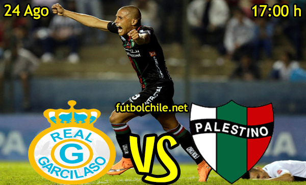 Ver stream hd youtube facebook movil android ios iphone table ipad windows mac linux resultado en vivo, online: Real Garcilaso vs Palestino