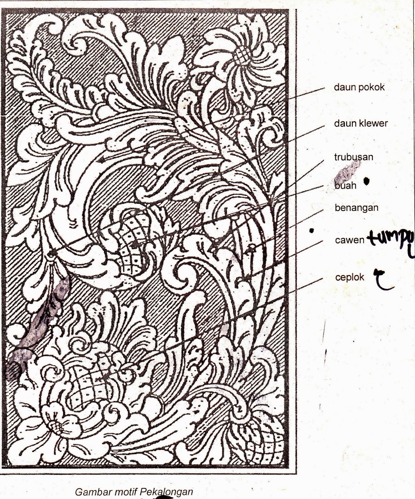 Kumpulan Sketsa Gambar Ragam Hias Pada Kayu