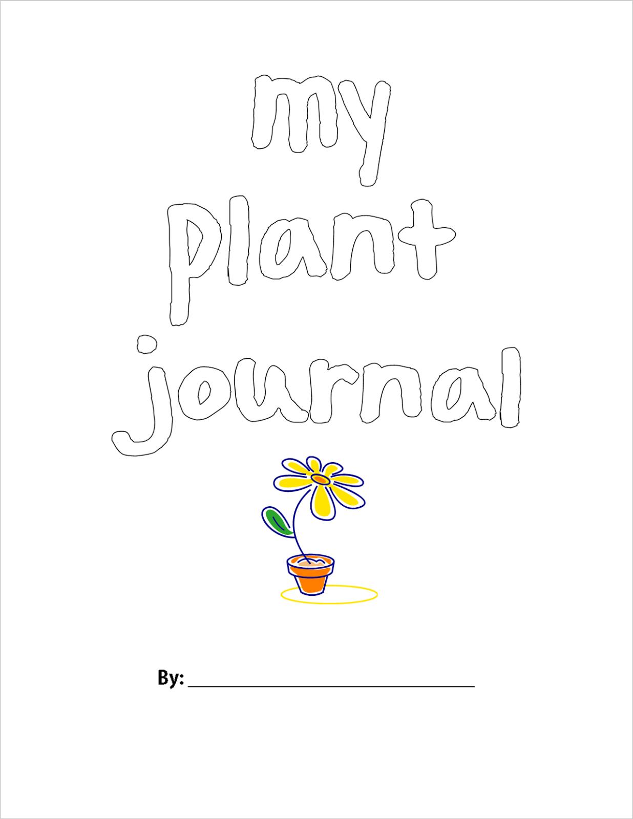 Naturally Creative Mama: Summer Series: Creating a Plant