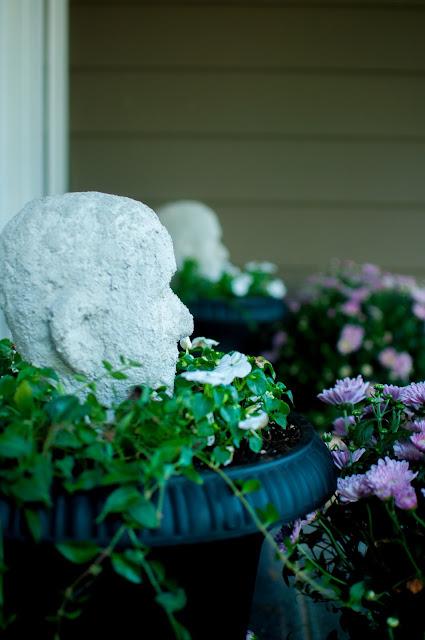 Spooky concrete head ornaments in planters for Halloween - Gwen Moss