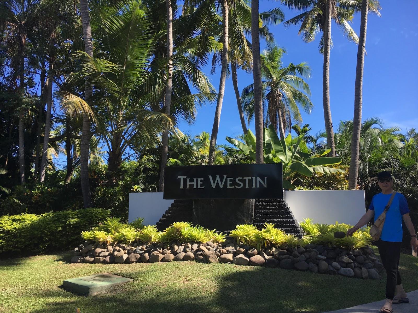 the westin denarau island resort spa tropical double. Black Bedroom Furniture Sets. Home Design Ideas