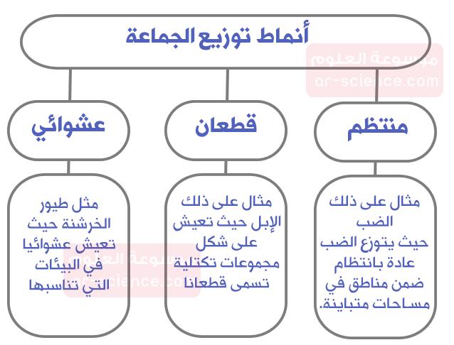 ارسم مخططات توضح أنماط توزيع الجماعة.