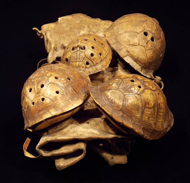 Turtle shells served as symbolic musical instruments for indigenous cultures of North America