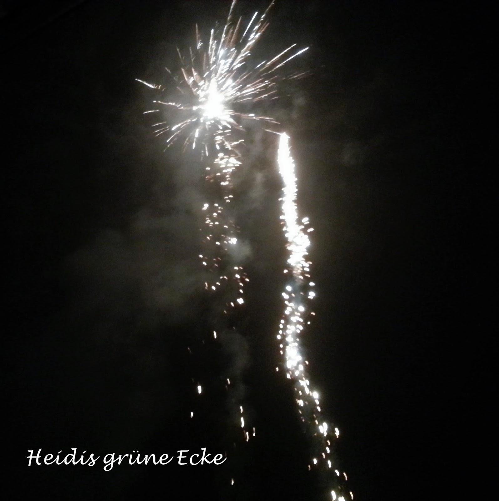 Heidis grüne Ecke: Prosit Neujahr! Ein gutes Neues Jahr!