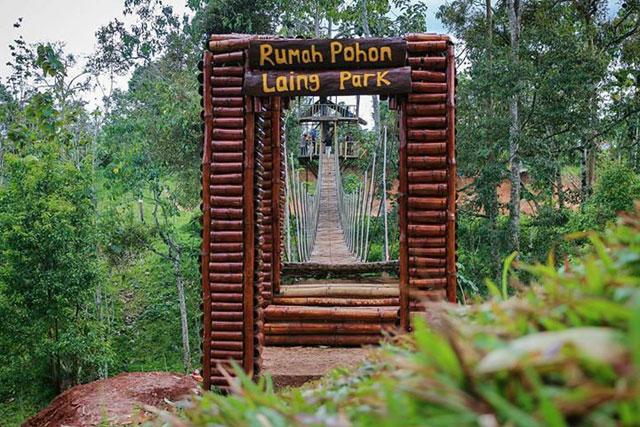Rumah Pohon Laing Park