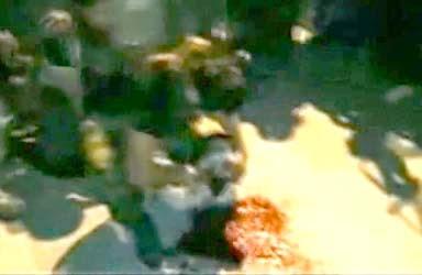 Brutal Asesinato del Grupo Isis